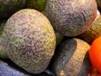 Ripe Avocados for a Guacamole Dip Recipe