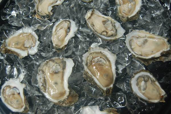 Fresh Louisiana Oysters - Louisiana Seafood Joints